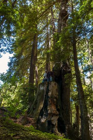 At Julia Pfeiffer State Park in Big Sur, California